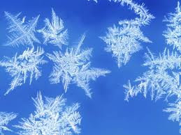 SNOWFLAKE images